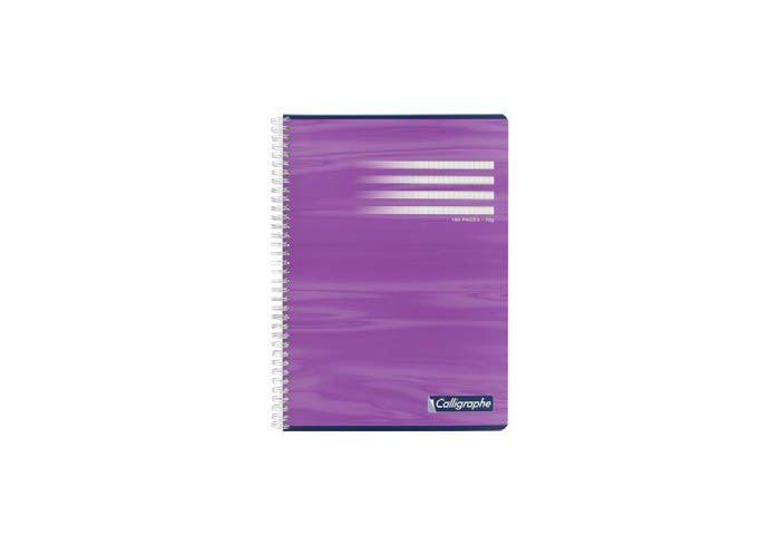 P.10 CAHIER SP SEYES 100P 210X297