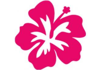 P.10 STICKERS FLEUR POLYNESIE ROSE